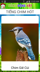 Screenshot_2014-06-04-00-03-50